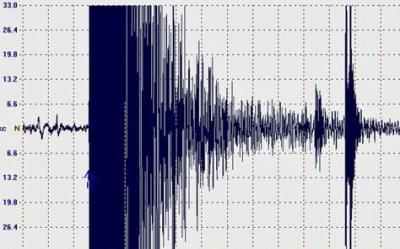 Terremoto Italia centrale: Curcio