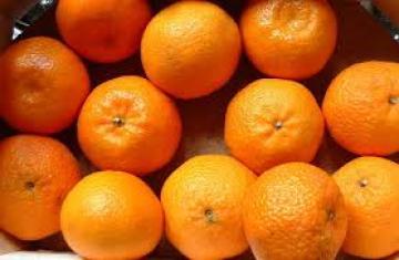 Tavolo agrumi al ministero, presi importanti provvedimenti riguardanti la percentuale di succo nelle aranciate